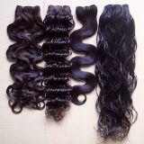 Virgin Hair Extension Extension de CHEVEUX BRÉSILIENS Cheveux humains de la trame de Tissage de cheveux bouclés vague trame différent