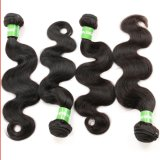 Kinky brasileño rizar el cabello virgen de los paquetes de tejido de rizo Afro peluca