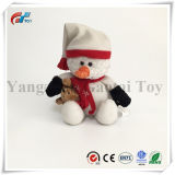 De Teddybeer van Kerstmis van de Fabriek van China