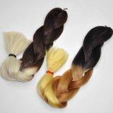 Выдвижение 100% волос оплетки Kanekalon синтетического X-Pression оплетки волос Jumbo Lbh 056