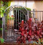 Nice en de Mooie Elegante Poort en de Deur van het Ijzer voor Gardern