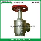 Klep van de Hydrant van de Brand van het messing de Landende met het Handvat van het Aluminium (AV4067)