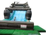 Aufblasbarer grosser erstklassiger Wasser-Schweber mit Swimmingpool