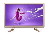 17 19 22 pouces HD Smart TV LED LCD