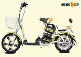 [موبد] درّاجة كهربائيّة مع سلّة, كهربائيّة [سكوتر] درّاجة لأنّ بالغ