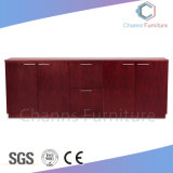 Modern Wooden Office Furniture Melamine Spins Cabinet (CAS-FC1801)