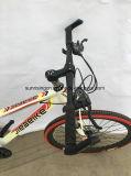 2018ニースデザイン山によってはMTB052が自転車に乗る