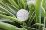 Im Freienarbeitsweg-magisches Münzen-Wegwerfgewebe