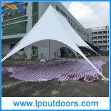 14X19mの屋外の二重ピーク白PVC星の陰のおおいのテント