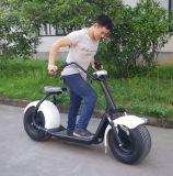 Самокат поставщика 1000W Китая электрический с Bluetooth (JY-ES005)