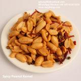 Bonne qualité Snack les noyaux d'arachides épicée frit Hot Sale