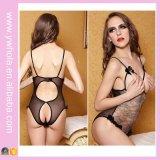 Le ragazze sexy hanno esposto la biancheria trasparente del grande seno aperto per le donne