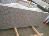 Promotion Price, G664 Granite Slabs & Tiles를 가진 G664 Granite Slab Polished