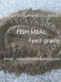 La harina de pescado para alimentación proteína 65%Min con precios más bajos