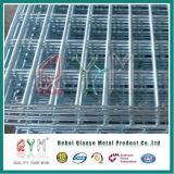 PVC покрыл проволочную изгородь близнеца загородки сваренного металла 868