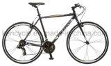 [700ك] 21 سرعة [كر-مو] فولاذ ثابتة ترس درّاجة /Utility طريق درّاجة لأنّ بالغة درّاجة وطالب/[سكلوكروسّ] درّاجة/طريق يتسابق درّاجة/أسلوب حياة درّاجة