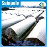 Invernadero agrícola del palmo de la película plástica del bajo costo solo
