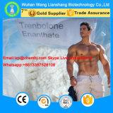 99% Trenbolone Enanthate 10161-33-8 Poderoso esteroide anabólico para el crecimiento muscular