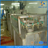 Pig Slaughter House Stainless Steel Sheep Butcher Equipment