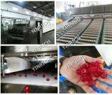 사탕 제작자 사탕 공정 라인은 예금했다 2개의 색깔 묵 사탕 생산 라인 (GDQ300)를
