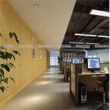 El panel de pared resistente al agua decoración de interiores WPC Ecológico (W1-P6)