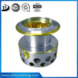 Aluminium/Eisen/Messing/Edelstahl/Kohlenstoffstahl-/Metallmaschinell bearbeitenteile für Automobil-/Auto-Motor