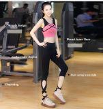 2016 La mujer encantadora comercio al por mayor desgaste del deporte, fitness llevar traje de Yoga