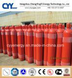 Cilindro ad ossigeno e gas del CO2 dell'argon dell'azoto dell'acciaio senza giunte