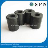 ステップ・モータのための常置焼結させた亜鉄酸塩の磁石のリング