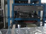 Vácuo da caixa dos PP que dá forma à máquina
