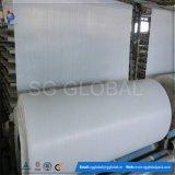 Tissu tissé par pp blanc d'usine de la Chine