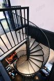 Escadaria ao ar livre Pr-S65 da espiral dos trilhos da escada do metal da escada de aço
