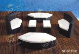 Insiemi esterni del sofà, mobilia del rattan del patio, insiemi del sofà del giardino (SF-301)