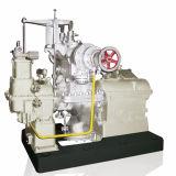 Una etapa de la turbina de vapor de contrapresión