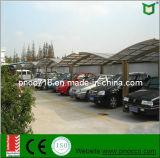 Hot Sale China Car Ports com Quanlity Alto Pnoc110101ls