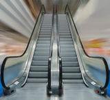 Escalera mecánica profesional de 30 grados / escalera