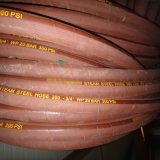 Tubo flessibile del vapore del filo di acciaio