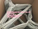 Gancio /Plastic del collegare