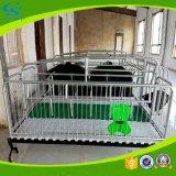 Landwirtschaft der galvanisierten Pflanzenschule-Rahmen, die Bett säen