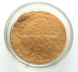 Extrait courant d'Anemarrhena Asphodeloides d'origine normale de la Chine