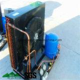 Conservación en cámara frigorífica, cámara fría, refrigeración