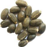 Alimentação de fábrica natural do melhor preço extrato de semente de cânhamo e de sementes de cânhamo em pó