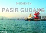 Professionele Overzees die van Shenzhen aan Pasir Gudang verschepen