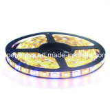 144 LEDs/M RGBW 4 in 1 indicatore luminoso di striscia di colore LED