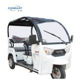 De Riksja van China 650With800W, de Elektrische Driewieler Met drie wielen van de Passagier