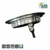 IP68 316 indicatore luminoso subacqueo messo del raggruppamento dell'acciaio inossidabile LED