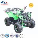 Lianmei ATV 110ccはATVをからかう