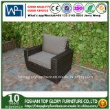 Viroの藤の屋外のソファーの家具