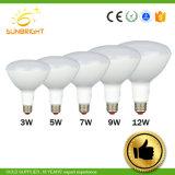 De LEIDENE van de in het groot LEIDENE Lamp van de Besparing E27 Bol van de Lamp