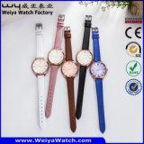 La montre de dames classique d'affaires de montre de montre occasionnelle d'alliage (Wy-107B)